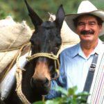 Juan Valdez, el ícono del café colombiano